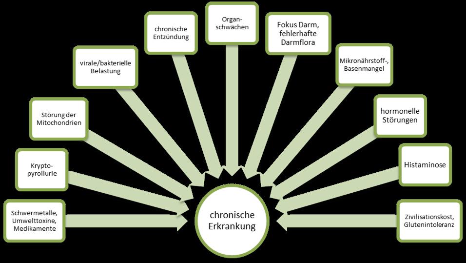 Kausalfaktoren chronische Erkrankungen